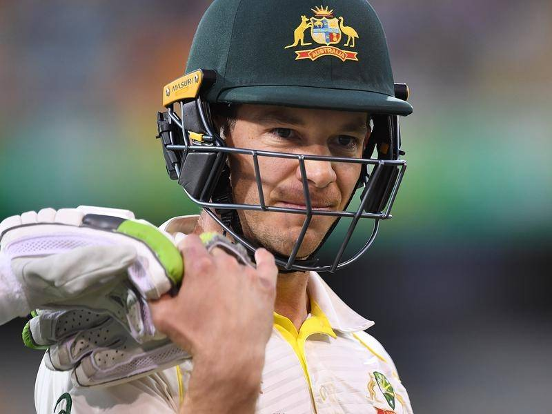 Tim Paine Sidelined From Sheffield Shield The Young Witness Young Nsw
